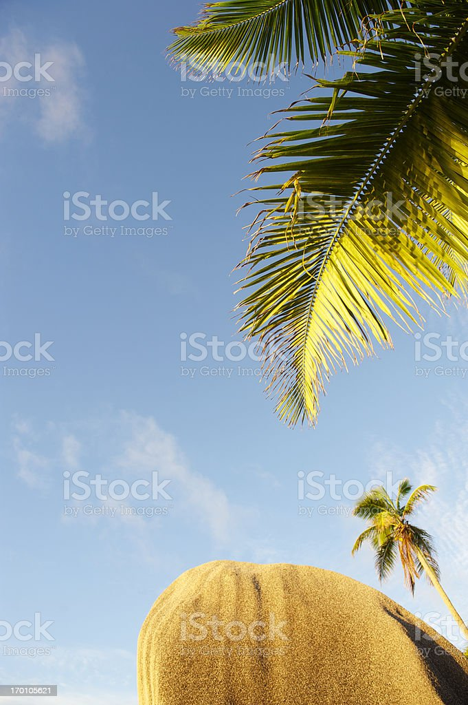 Seychelles Distinctive Rounded Granite Boulder with Palm Trees royalty-free stock photo