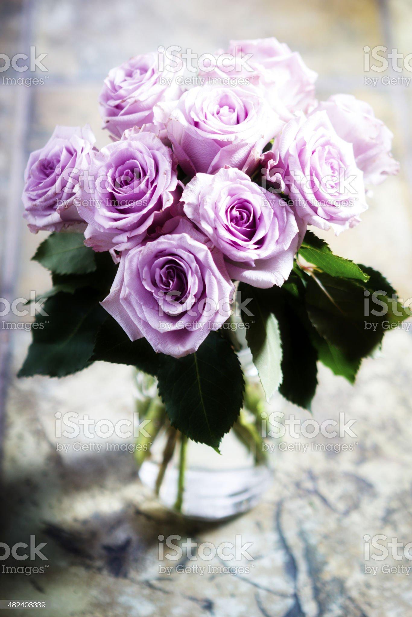 Shabby chic roses royalty-free stock photo