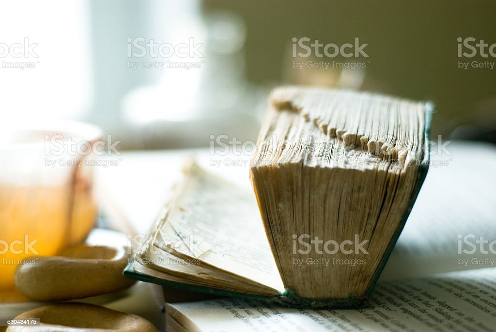 shabby old book stock photo