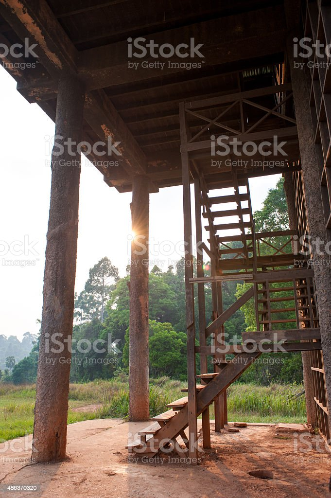 Shack to observe animals natural reserve park,Khao Yai National stock photo