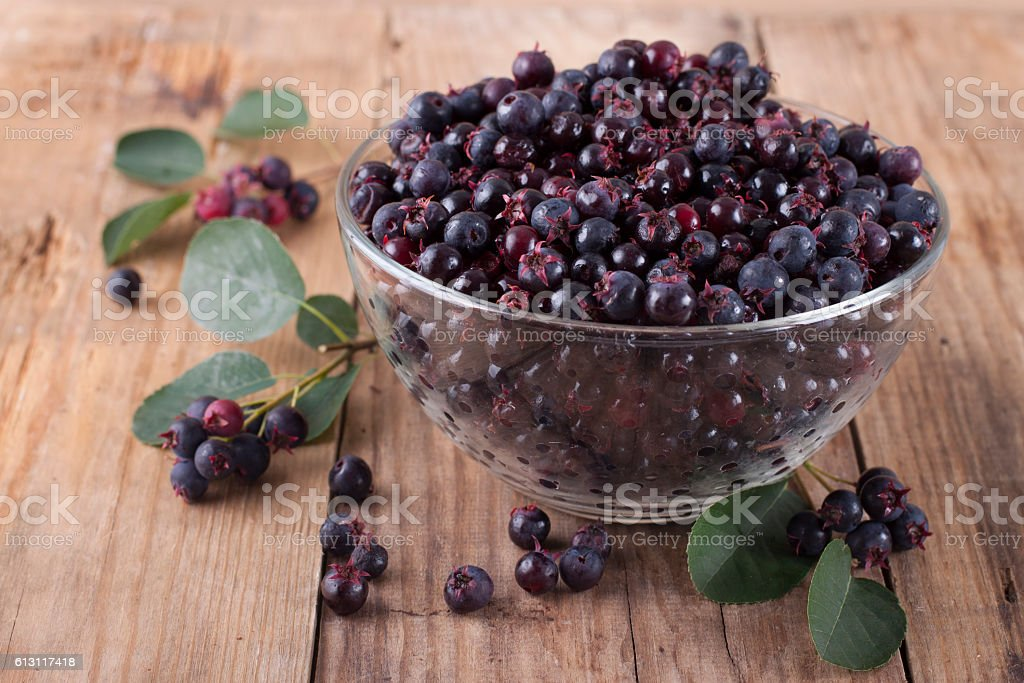 Shadberry in a glass bowl stock photo