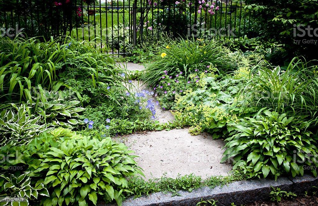 Shade Garden stock photo