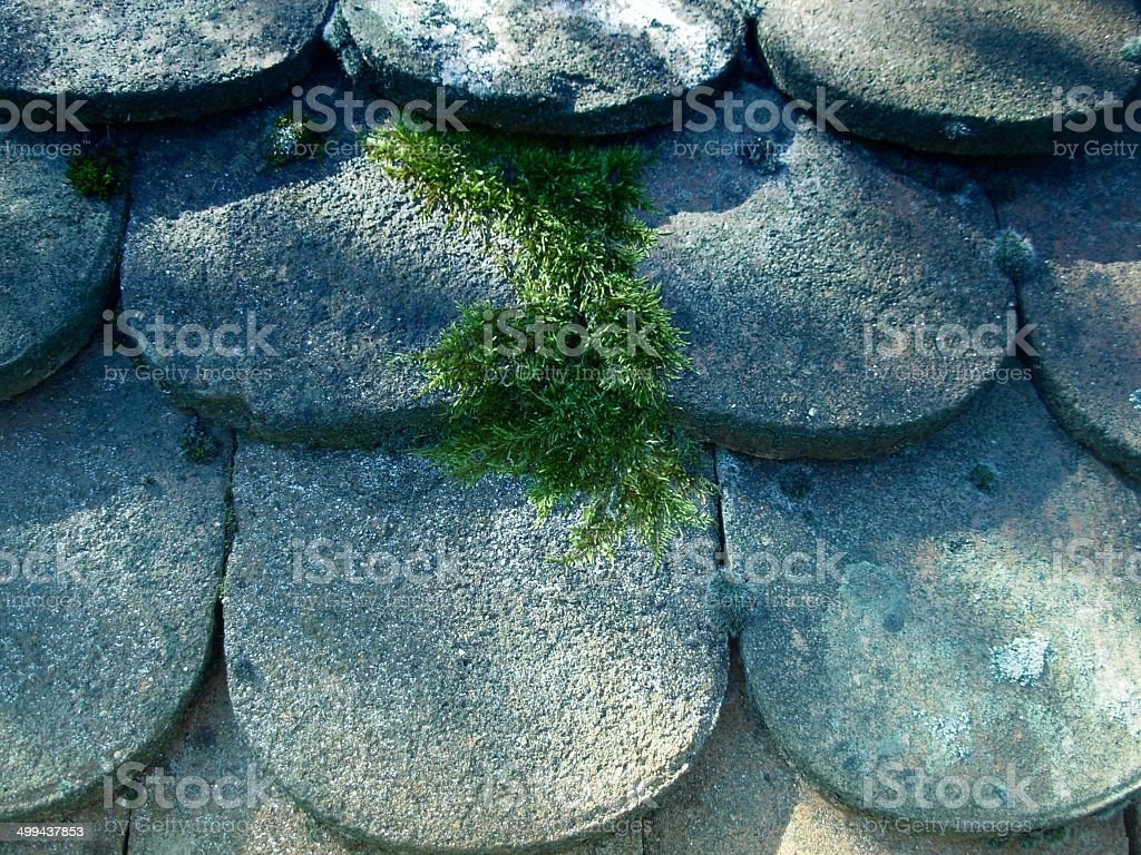Shaded roof of ancient potsherd c stock photo