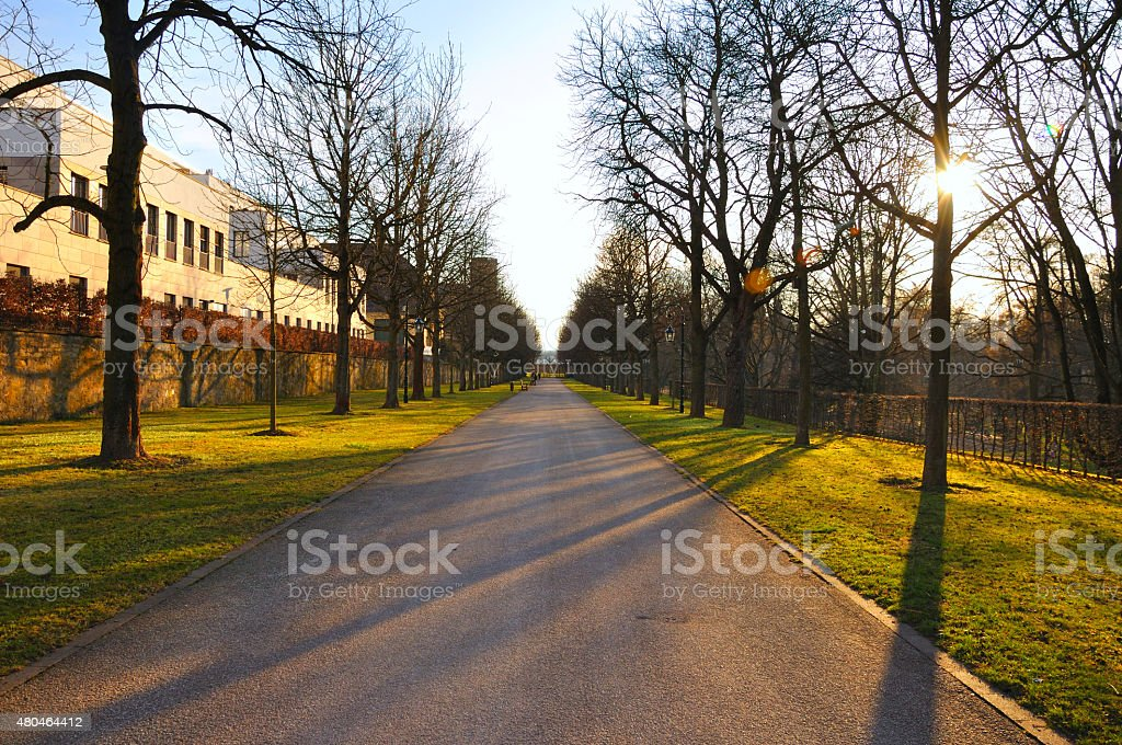 Shadow alley in early spring Stadtschloss park Fulda stock photo