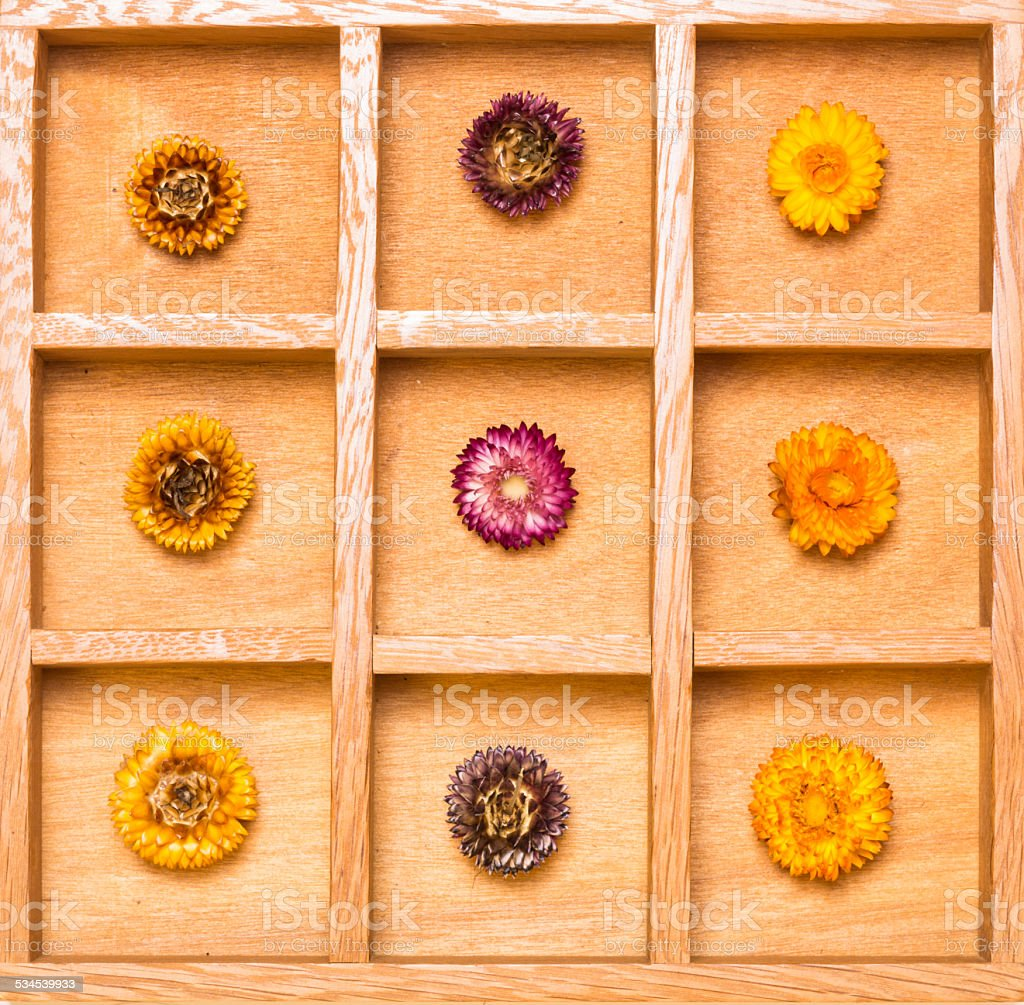 Shadow box with bright straw flowers stock photo
