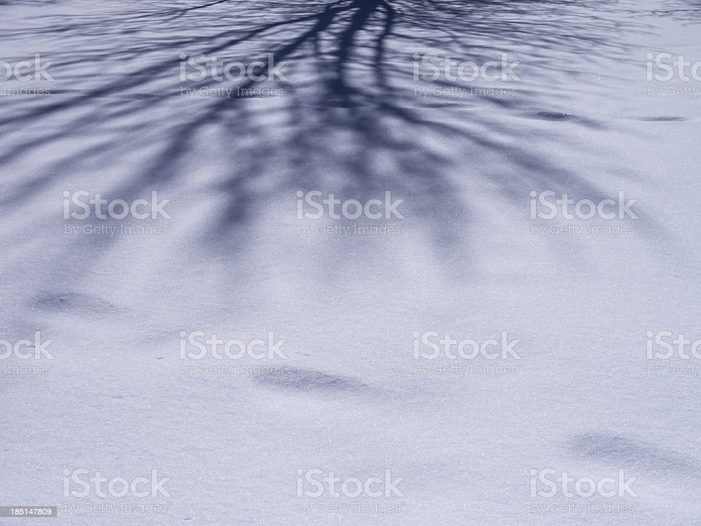 shadow of af tree on snow royalty-free stock photo