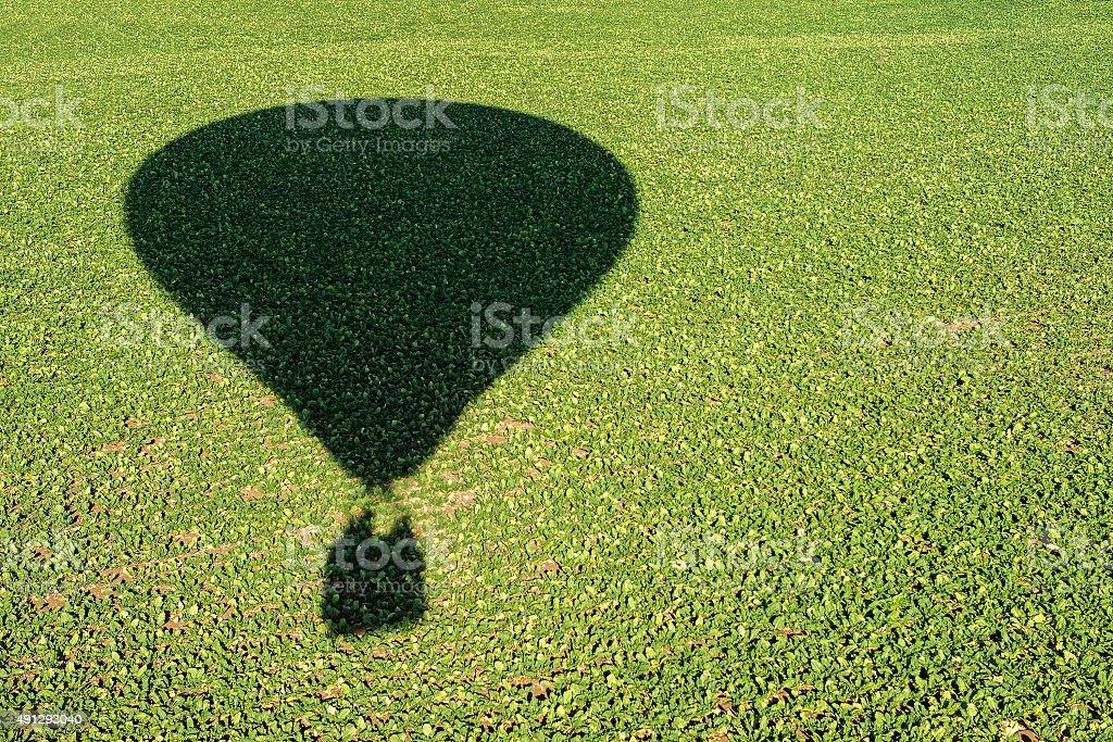 shadow of an hot air balloon royalty-free stock photo