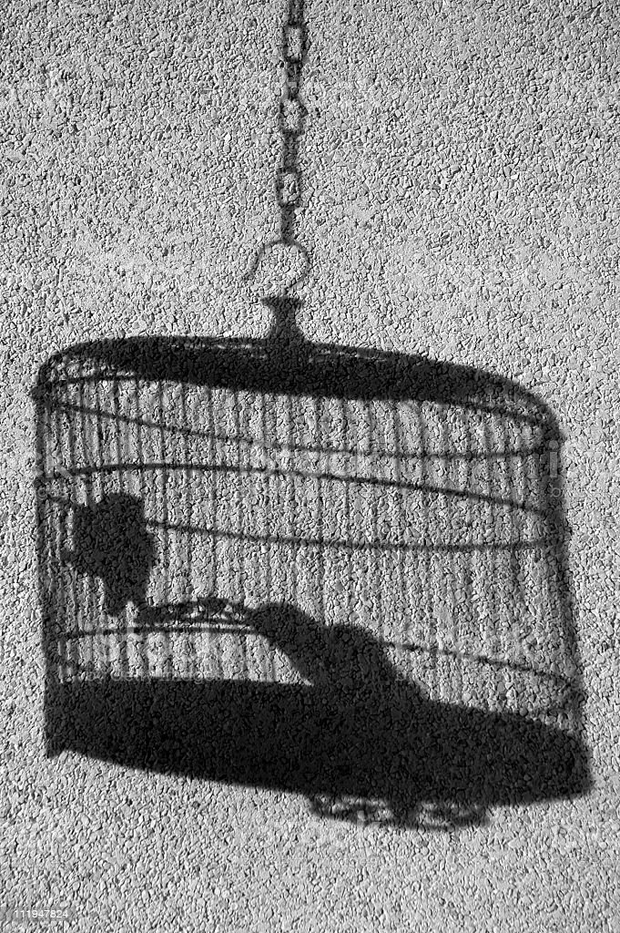Shadow of bird's cage against wall in black and white. royalty-free stock photo
