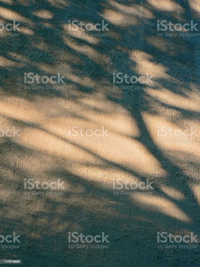 Shadow on wall royalty-free stock photo