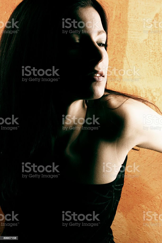 Shadowed portrait 1 royalty-free stock photo