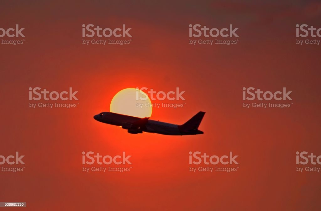 Shadow's Flying. stock photo