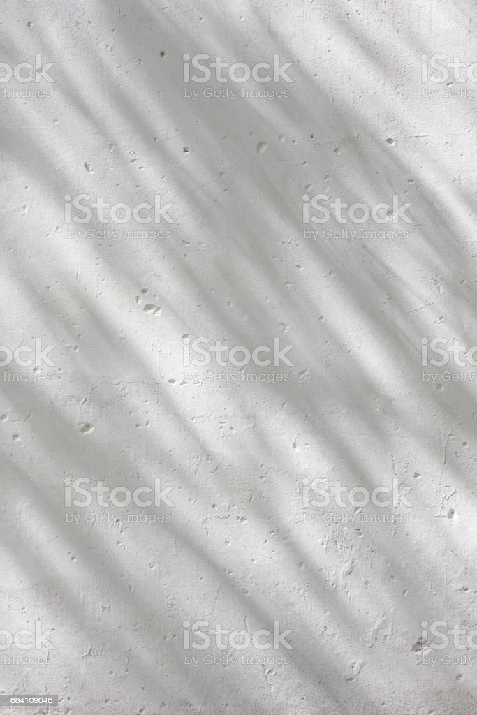 Shadows from foliage on a plastered wall stock photo