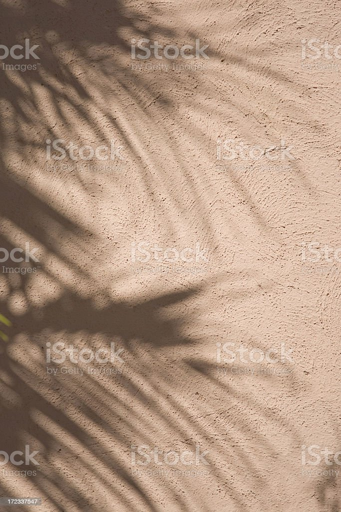 Shadows of a palm tree.... royalty-free stock photo