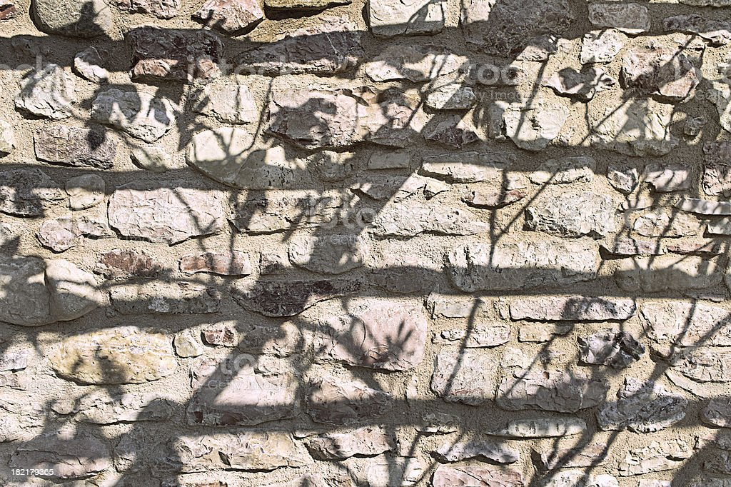 Shadows of fig leaves on stone masonry stock photo