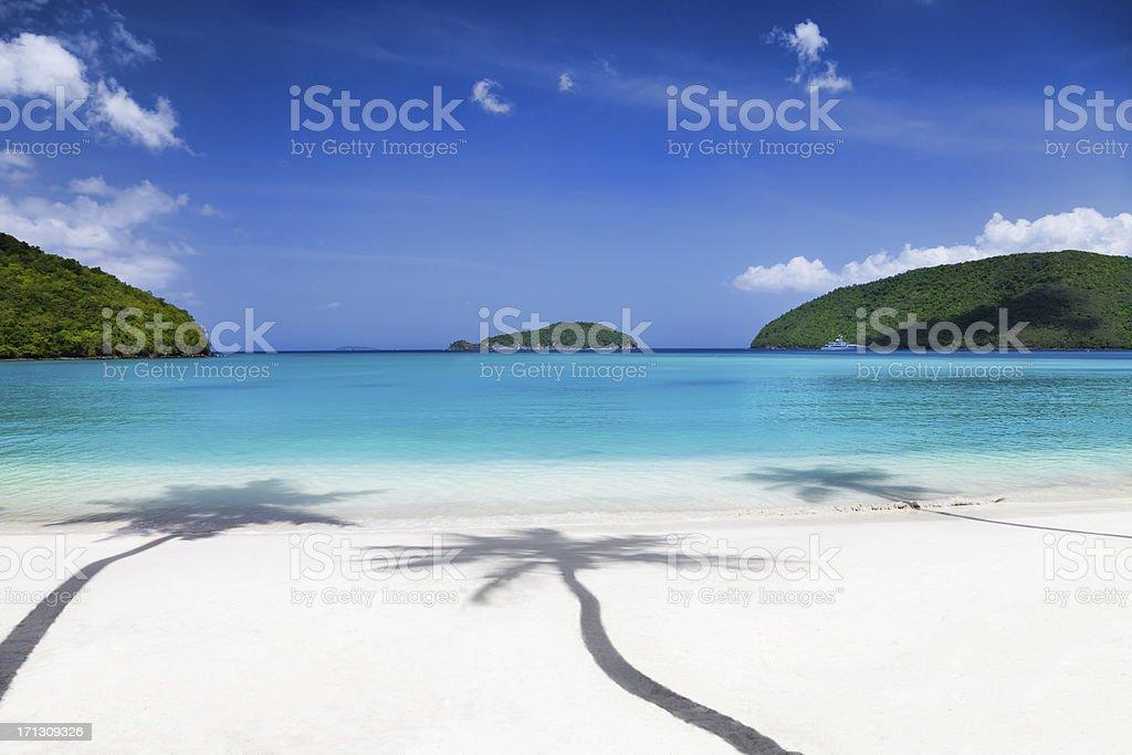 shadows of three palm trees at a tropical Caribbean beach stock photo