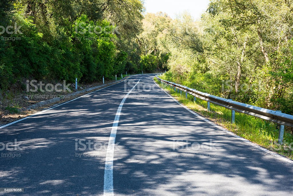 shadows on a country road stock photo
