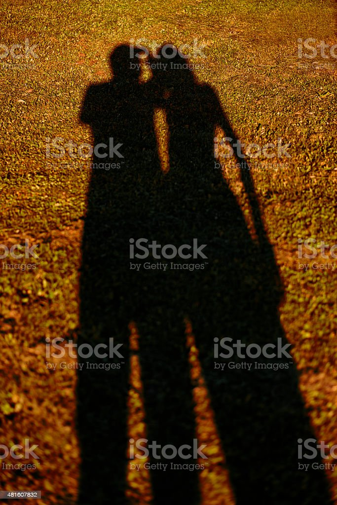 Shadows on the Grass, Summer Yellow stock photo