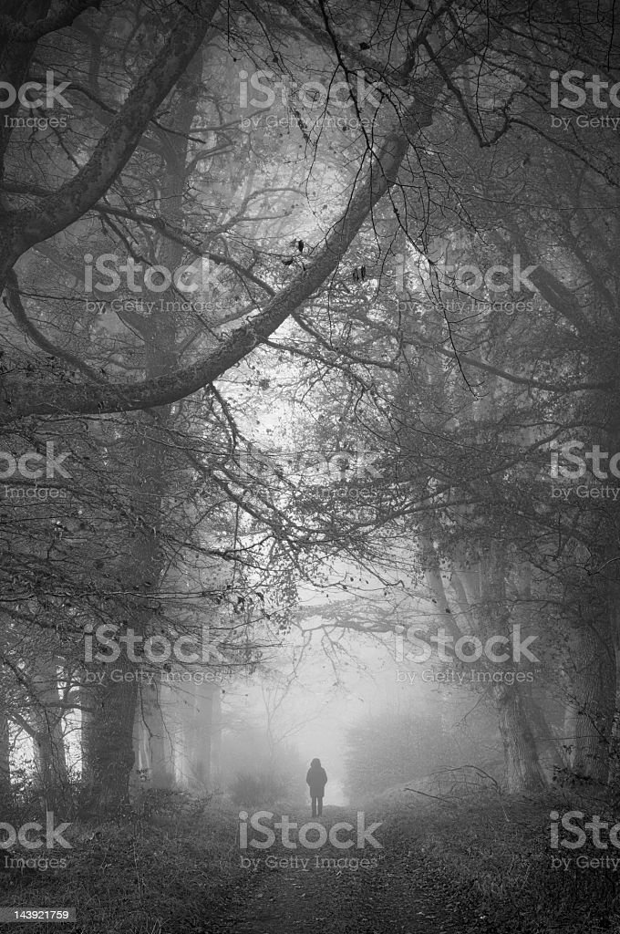 Shadowy image walking in misty wooded road royalty-free stock photo