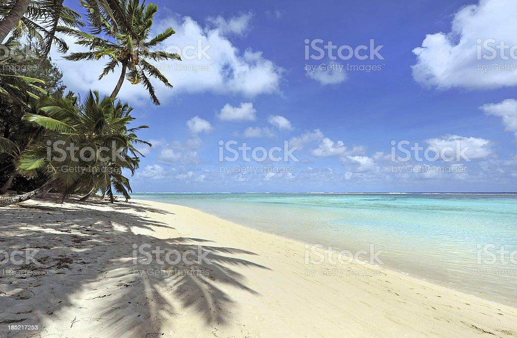 Shady beach royalty-free stock photo