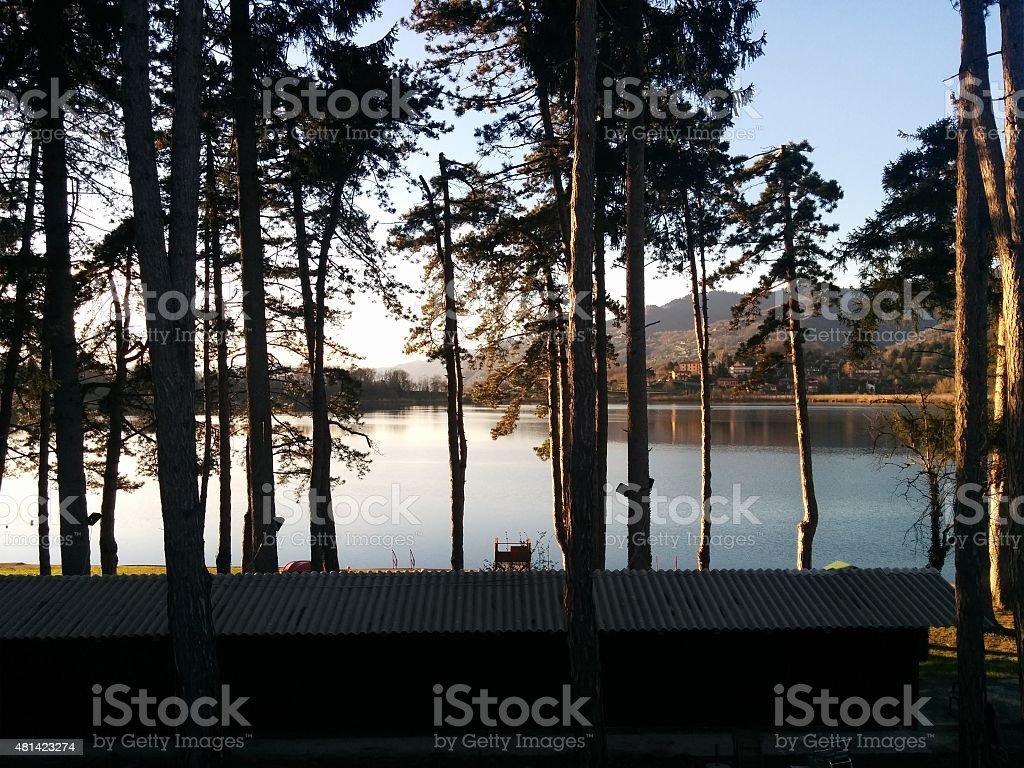 Shady trees next to the lake (Italy) stock photo