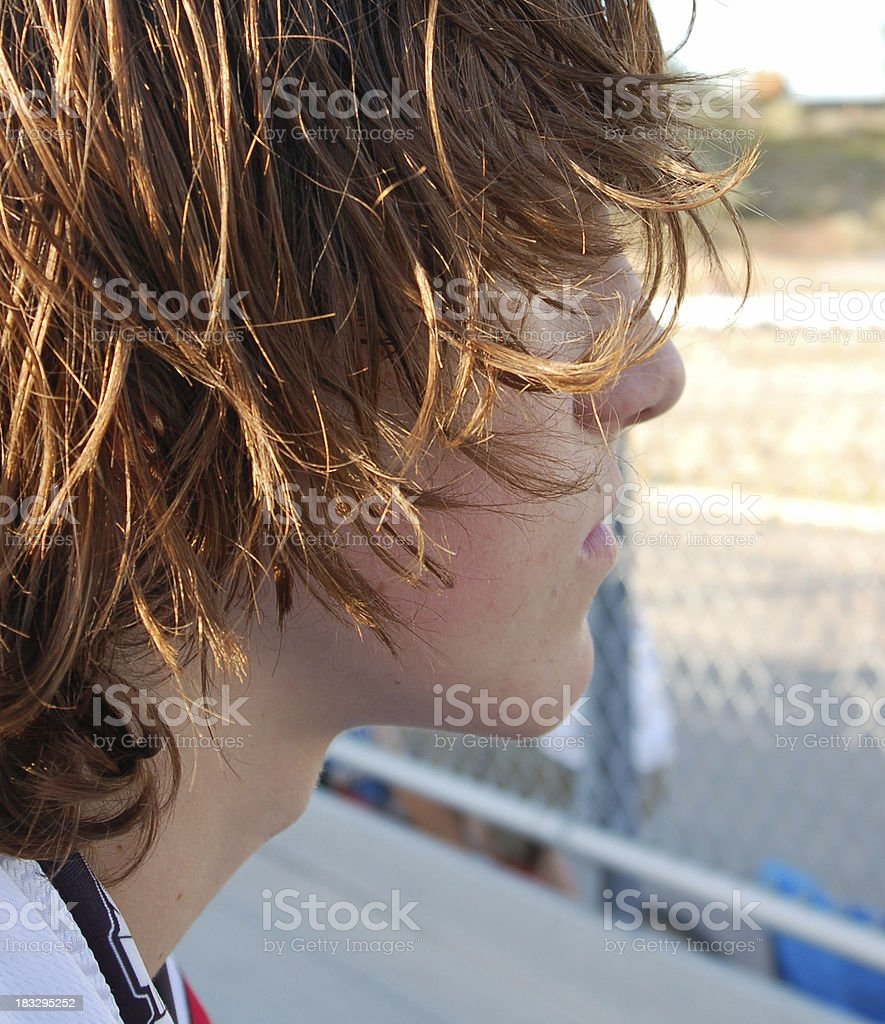 Shaggy stock photo