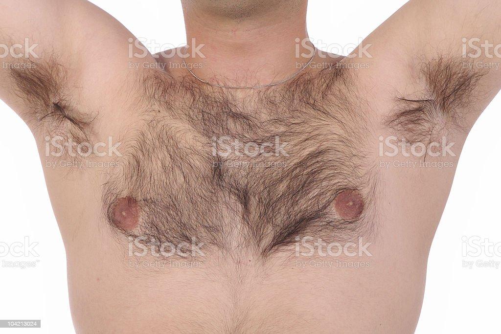 shaggy torso royalty-free stock photo
