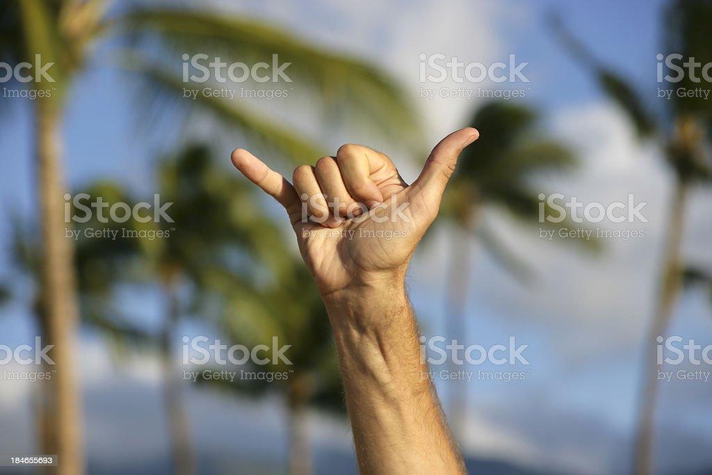 Shaka symbol stock photo