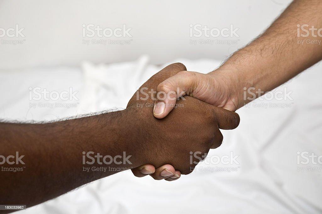Shake hands royalty-free stock photo