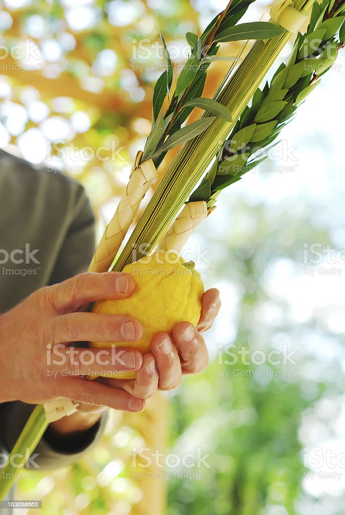 Shaking a plant in island nation stock photo