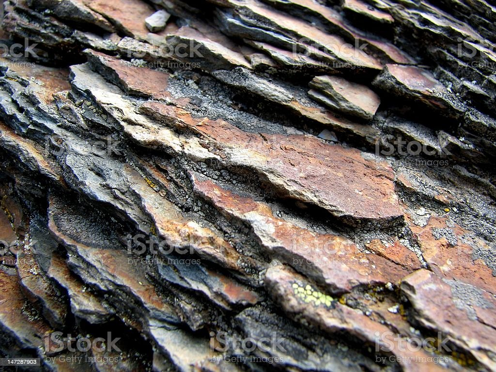 shale rock cross-section stock photo