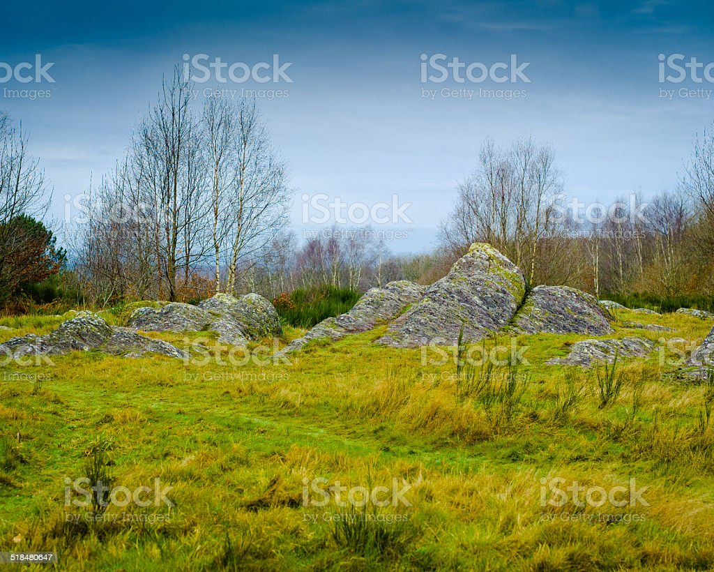 Shale stones - Broceliande Forest in France stock photo
