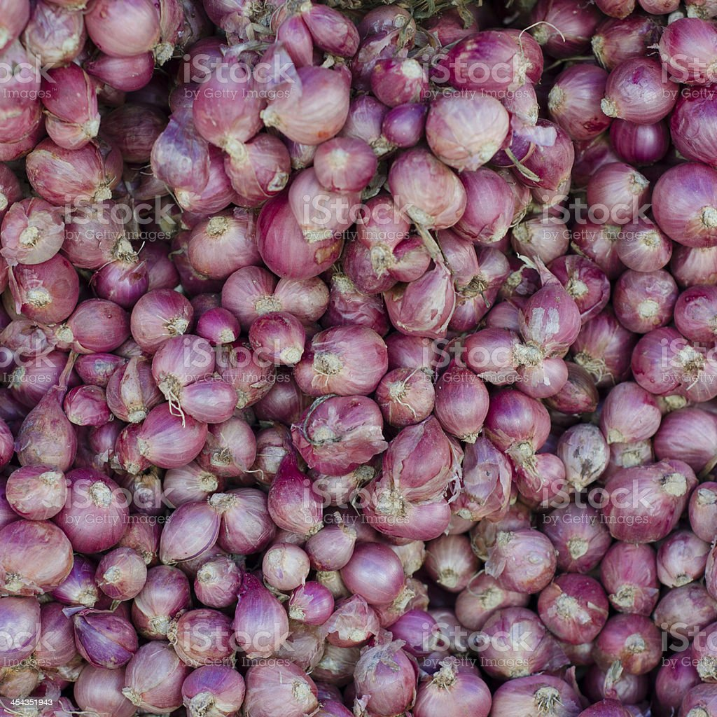 Shallot background stock photo