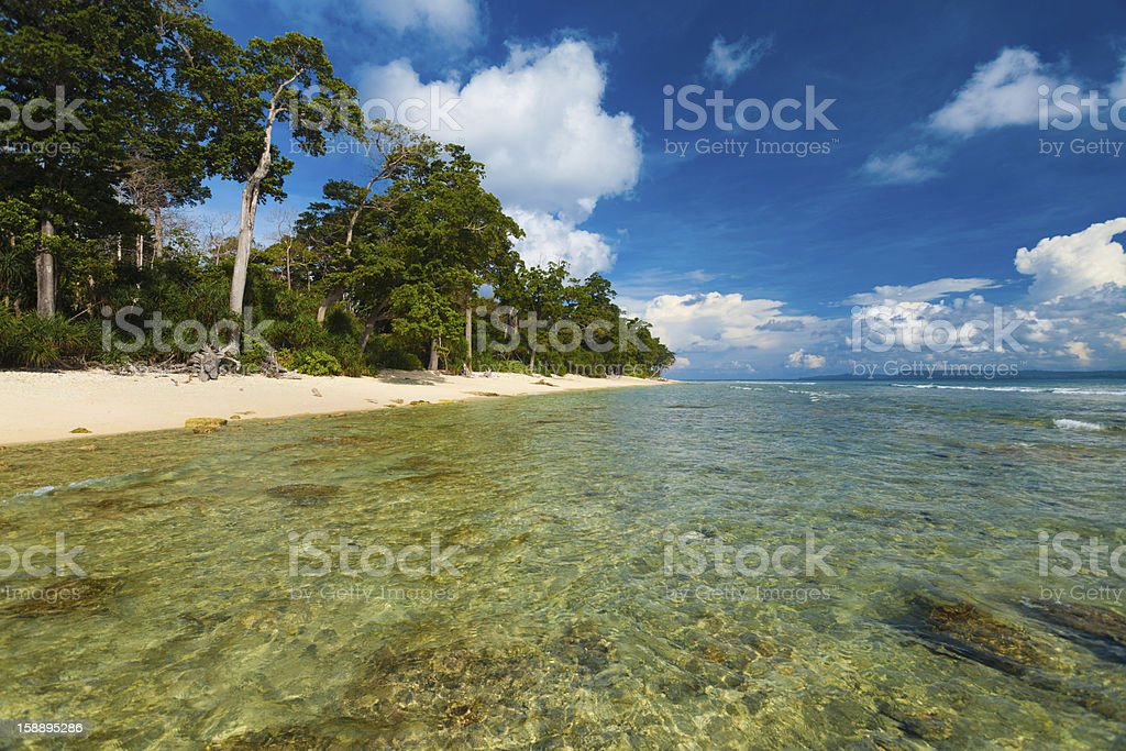 Shallow Crystal Clear Water Wild Pristine Beach stock photo