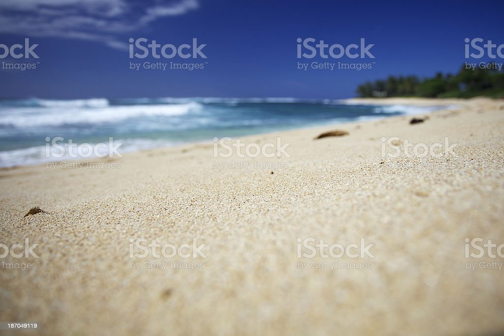 Shallow focus North Shore Beach, Hawaii royalty-free stock photo