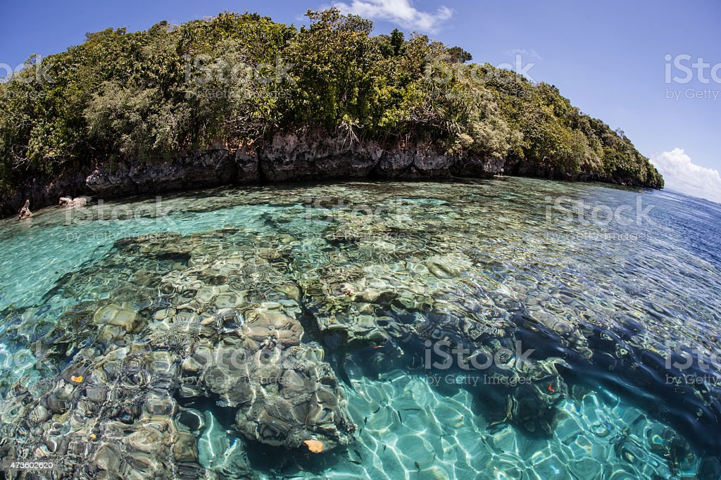 Shallow Reef and Limestone Island stock photo