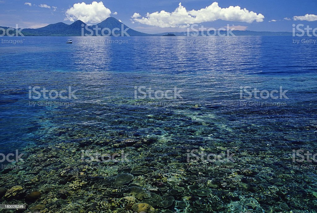 Shallow Reef stock photo