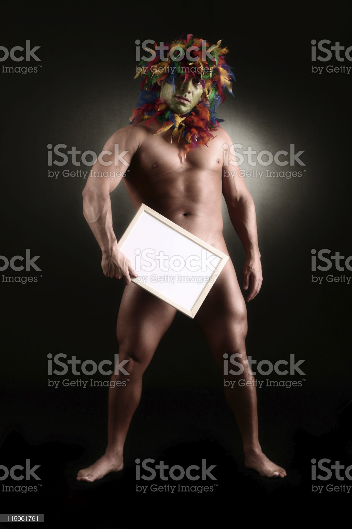 Shaman royalty-free stock photo