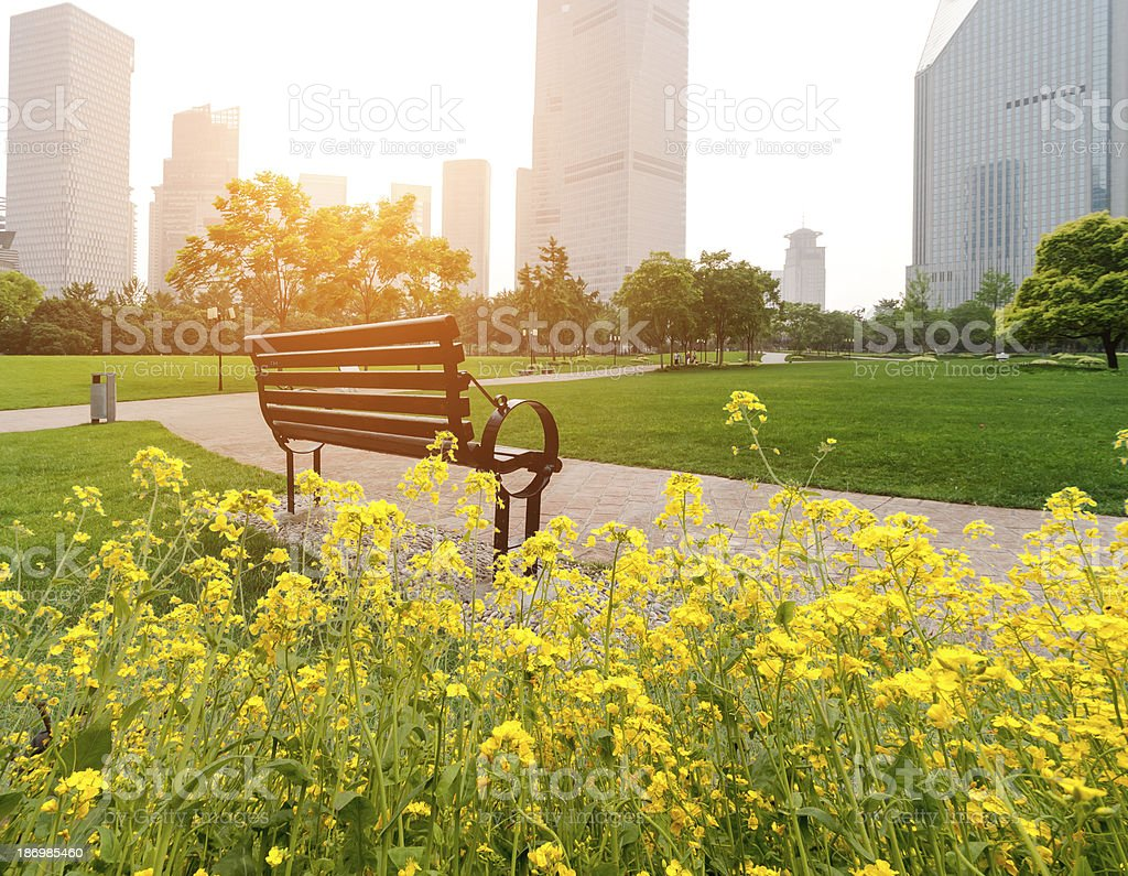 Shanghai Lujiazui financial district, park benches royalty-free stock photo