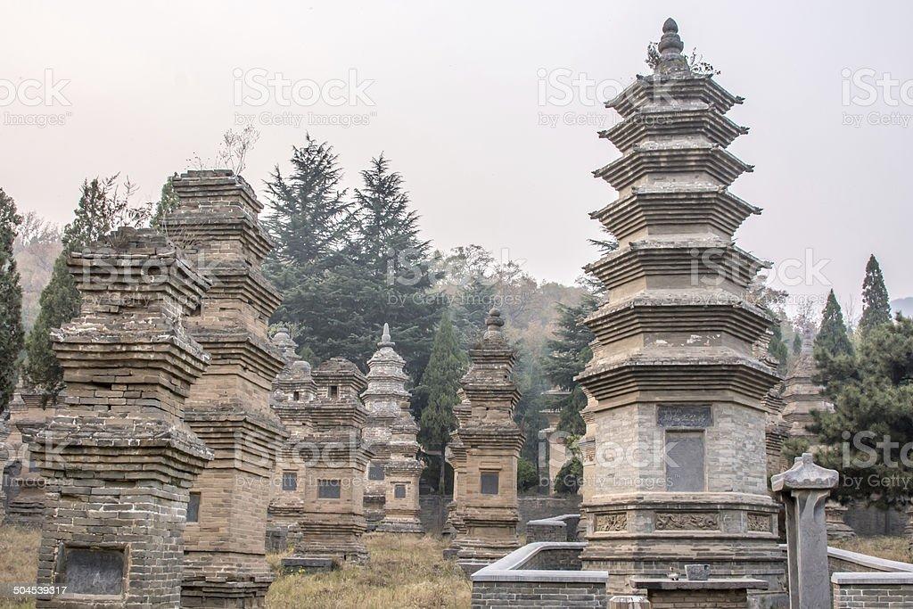 Shaolin Pagoda Forest stock photo