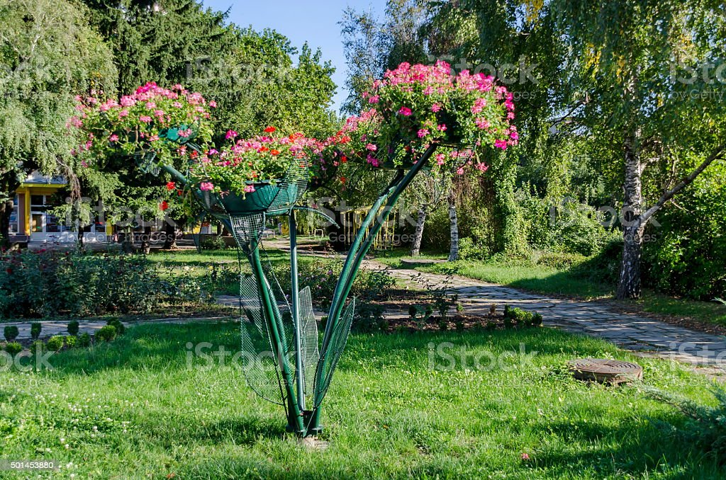 Shape with flowers in garden of Razgrad town stock photo