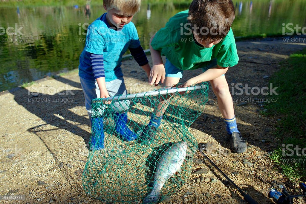 Shared Catch; Brothers Fish in Net at Rivers Edge stock photo
