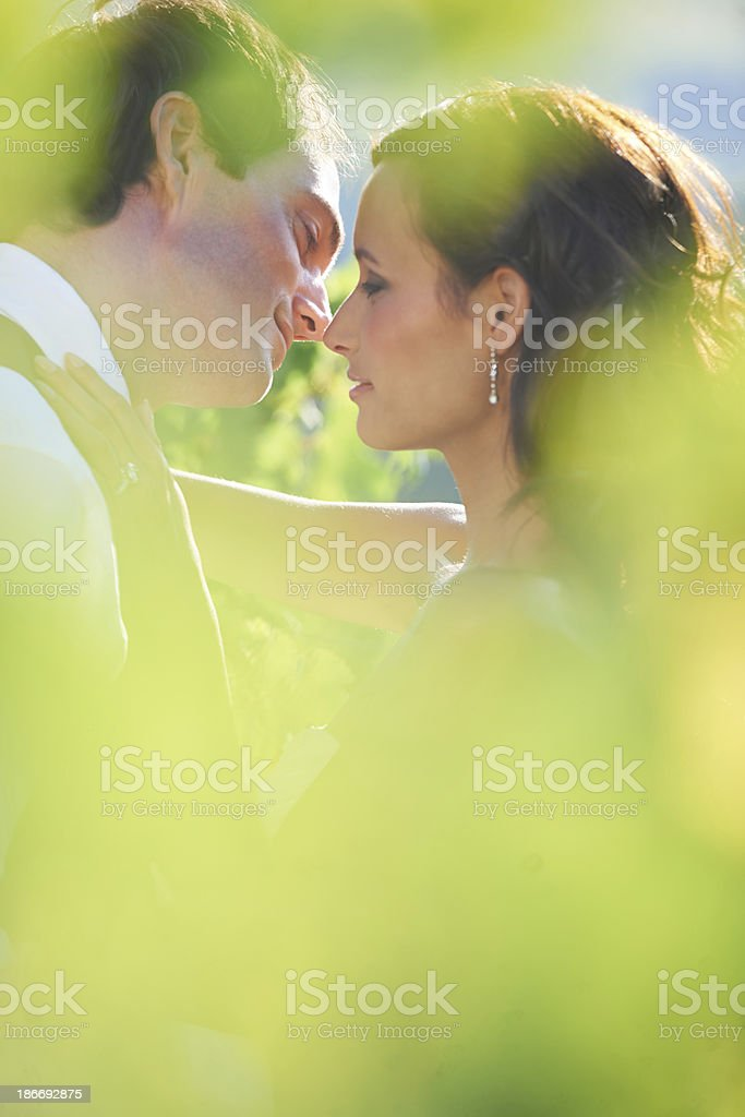 Sharing an intimate moment stock photo