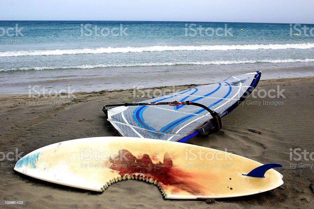 Shark Attack stock photo