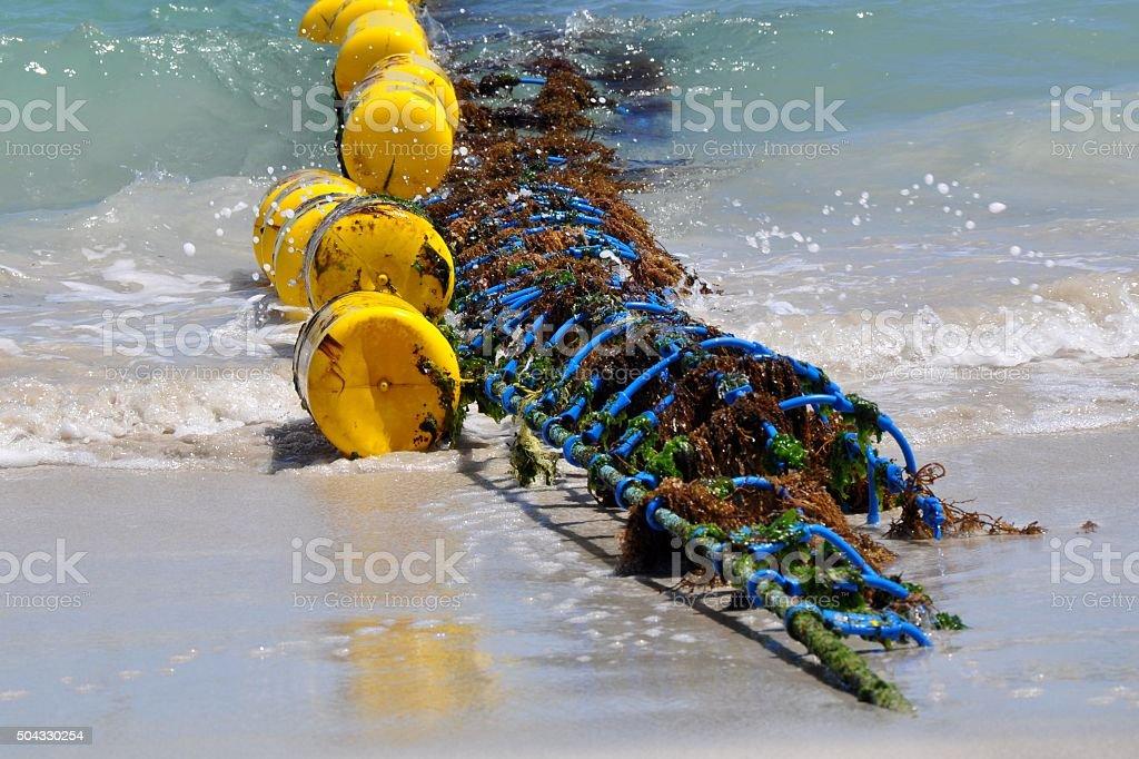 Shark Net with Yellow Buoys stock photo