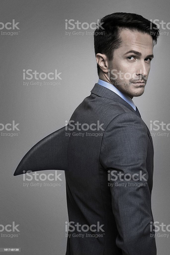 Shark of business stock photo