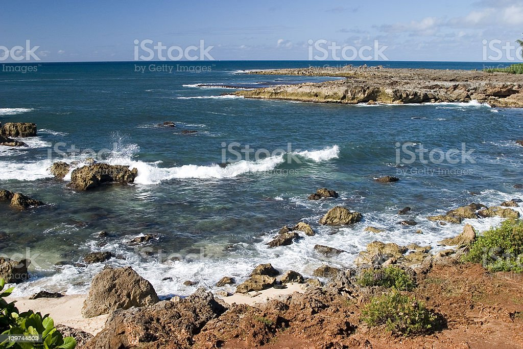 Shark's Cove royalty-free stock photo