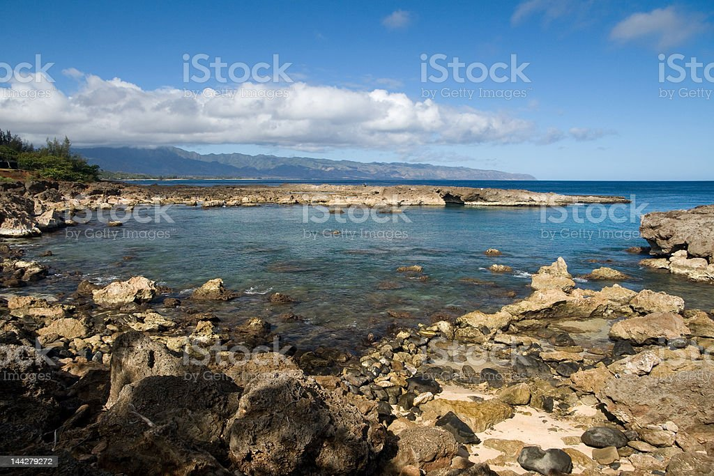 Shark's Cove stock photo