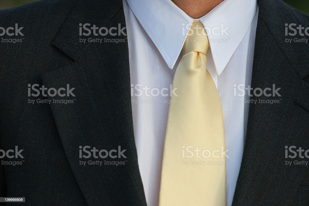 Sharp Dressed Man royalty-free stock photo