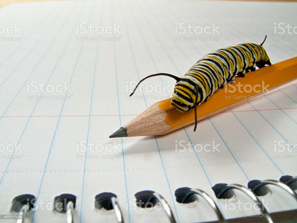 Sharpen Your Pencil stock photo