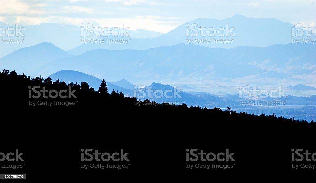 Shasta-Trinity National Forest stock photo